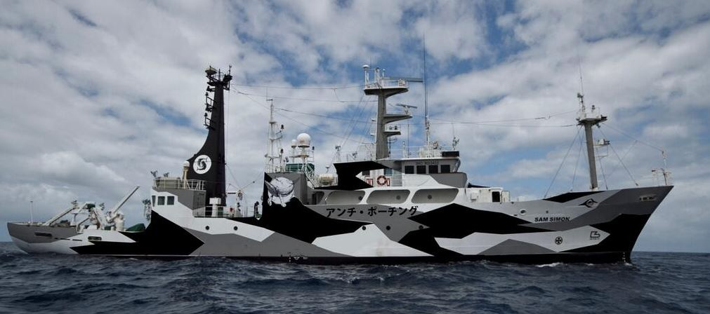 Sea Shepherd Boat