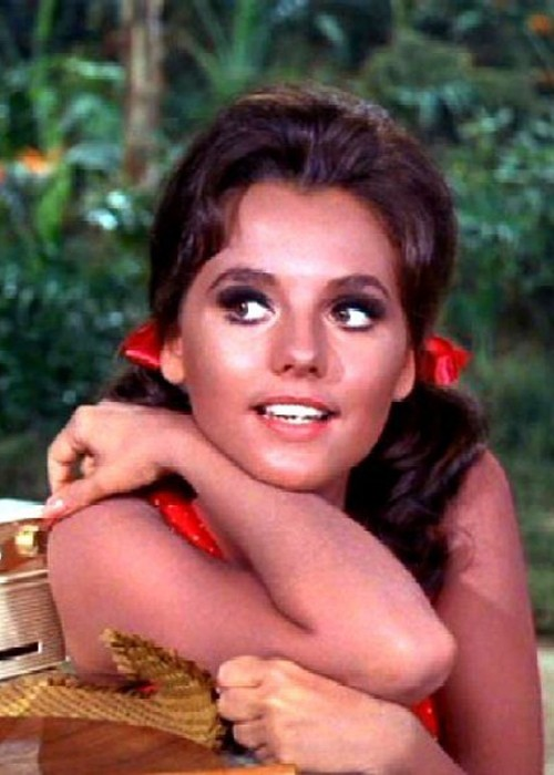 Dawn Wells Worth