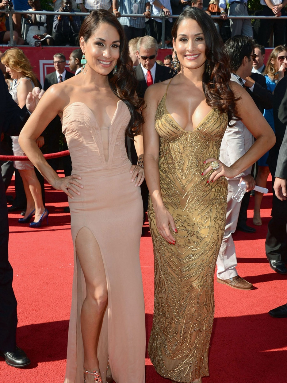 Bella Twins red carpet dresses