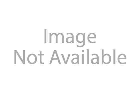 Bryan Cranston Steals a Kiss From Catt Sadler