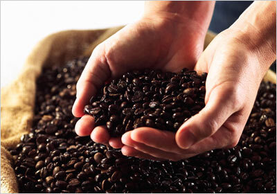 The 10 Most Expensive Coffees On Earth