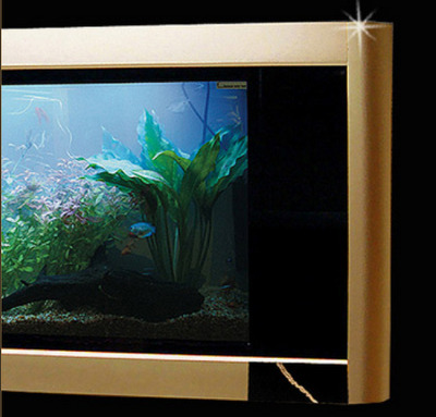 Most Expensive Fish Tank