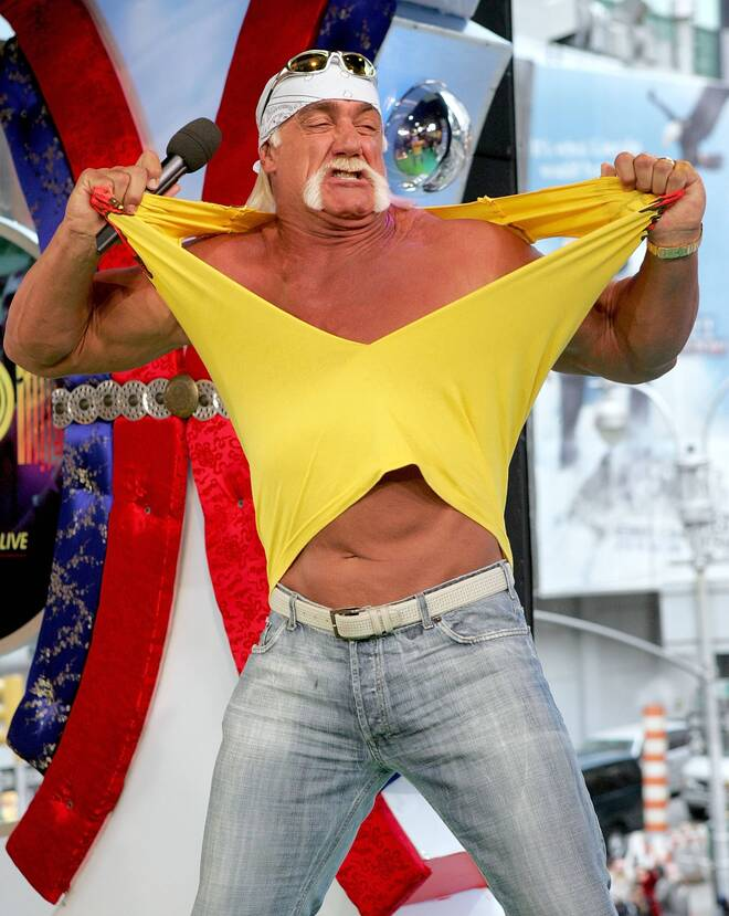 Bonus: Hulk Hogan Net Worth - $5 Million