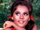 Dawn Wells Net Worth