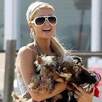 Paris Hilton invades Asia with Branded Resort, Stores and Products