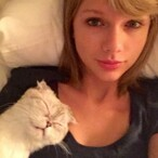 Taylor Swift's Cat Might Owe Her $40 Million