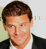 David Boreanaz Net Worth