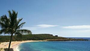 Thumbnail for Who Wants to Own a $600 Million Hawaiian Island?