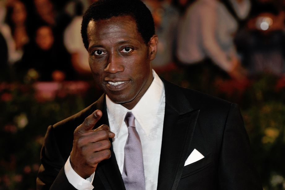 Wesley Snipes Tax Problems